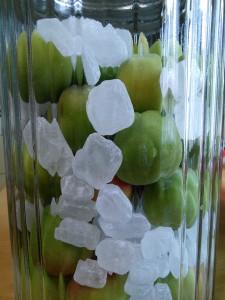 瓶に梅と氷砂糖