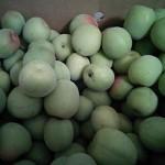 梅干し用梅の通販