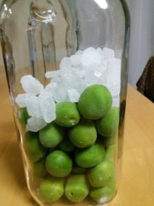 梅と氷砂糖