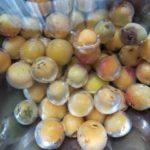 梅干しの梅は「紀州和歌山産 南高梅完熟」に限る!安物買いで失敗2020年